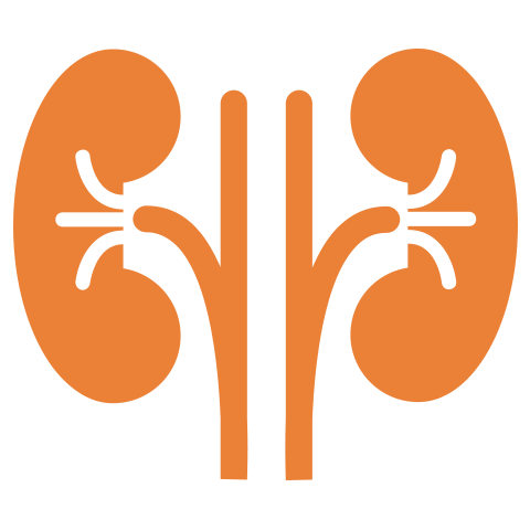 Moolchand | Best Kidney hospital | Top  Nephrologists & Kidney Surgeons | Delhi & Agra, India