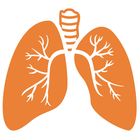 Moolchand |  Best Interstitial lung disease (ILD) treatment Hospital in Delhi& Agra, India